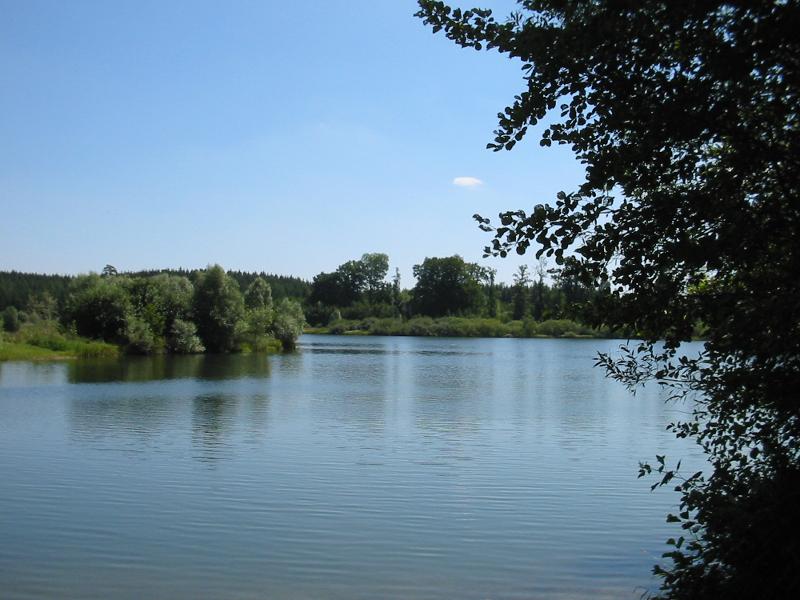 Schwackenreuter Seen